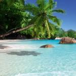 Ein Traum vom weißen Strand und Palmen auf den Seychellen