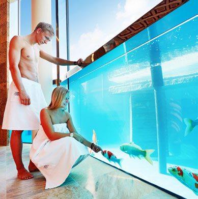 Thermen und badewelt euskirchen top magazin bonn for Koi pool and sauna