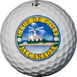 Der Durchmesser eines Golfballs liegt bei mindestens 42,76 mm, das maximale Gewicht 45,93 g. Die Oberfläche des Balls ist mit ca. 300 bis 450 kleinen Dellen (sogenannten Dimples) versehen.