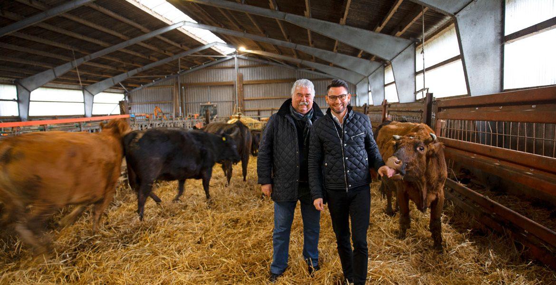 An, Ein, Aussichten von Dennis Ihle - Gutes Fleisch von glücklichen Tieren