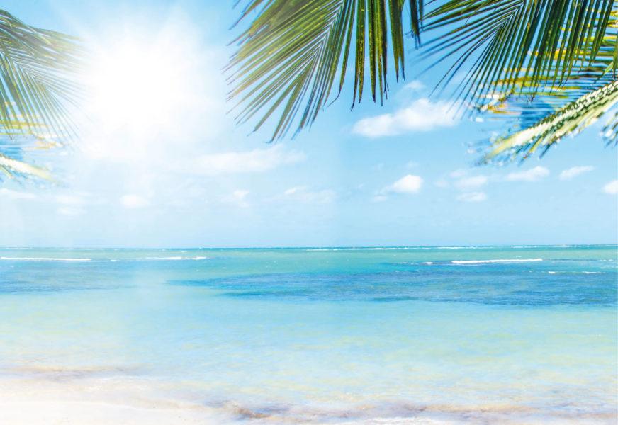 Wie und wo verbringen Sie dieses Jahr Ihren Sommerurlaub?