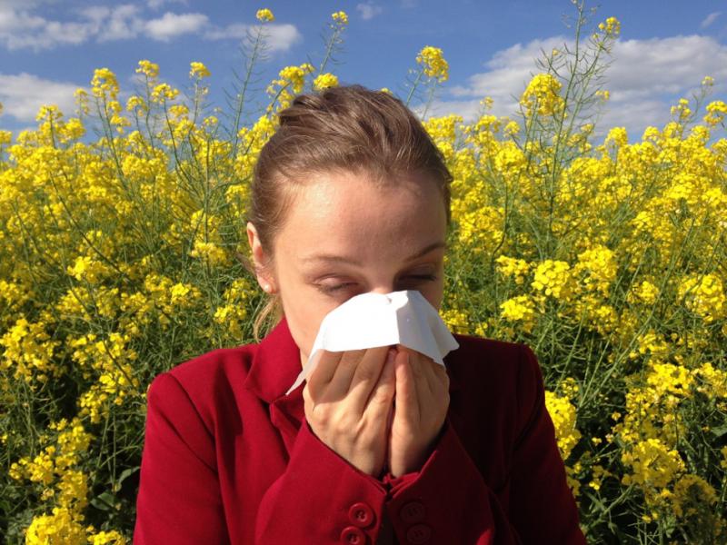 Mit einfachen Mitteln Allergien und Asthma natürlich bekämpfen